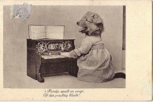 Vintage Dutch Dog Playing Piano | NYC Dog Trainer Services & Dog Wellness |