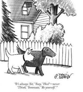 Dog Training Comic -- Innovate, Be Yourself | NYC Dog Trainer Services & Dog Wellness |
