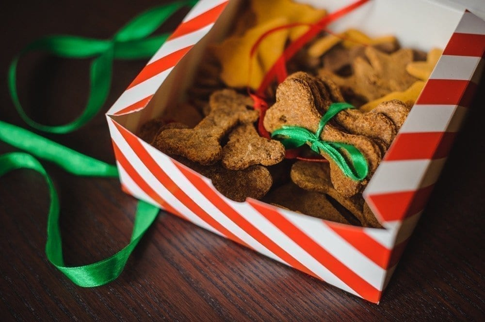 NYC Dog Trainer Services & Dog Wellness | Holiday dog treats