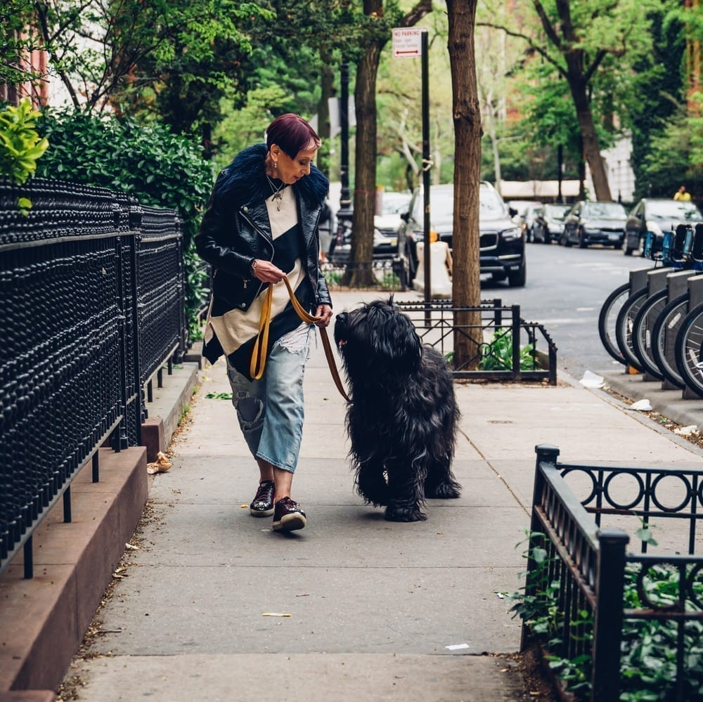 NYC Dog Trainer Services & Dog Wellness | Elisabeth Weiss walking her dog Zeldi