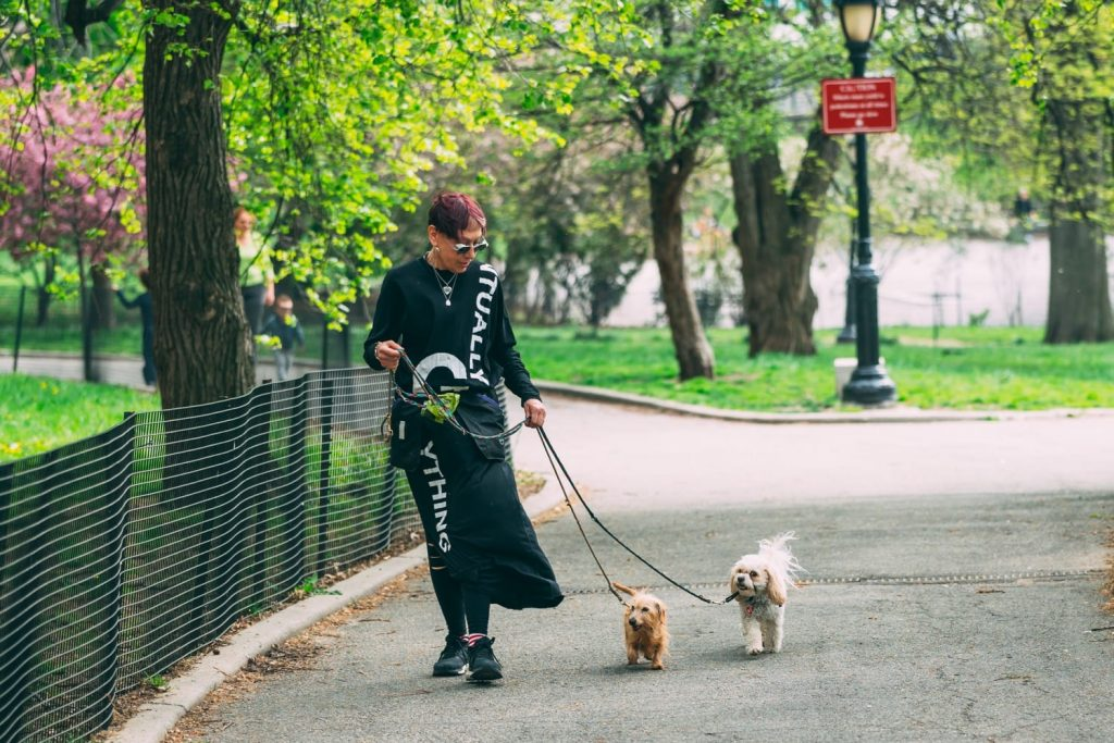 NYC Dog Trainer Elisabeth Weiss walking two dogs